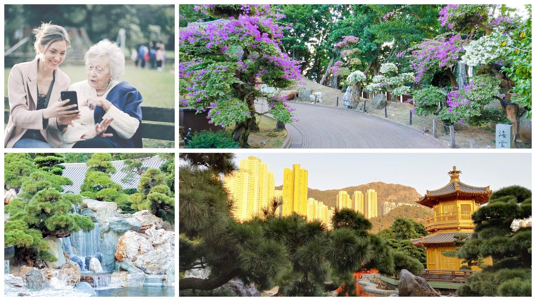 For your parents' Hong Kong trip, you should recommend Nan Lian Garden to them.